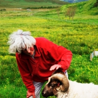 Hilda & Sheep