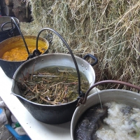 Dye pots, natural dyeing course, Wild Rose Escapes