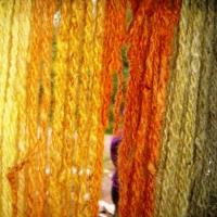 Bog Murtle & Nettle Dyes