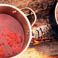 Madder dye pot