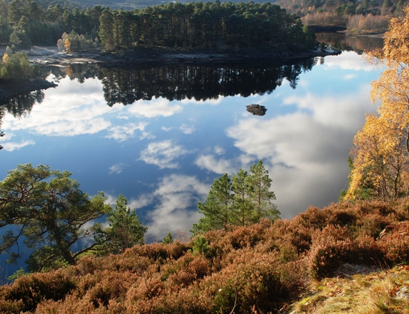 Glen Affric- the craft retreat, Wild Rose Escapes, Highlands, scotland