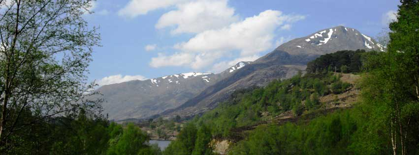 Glen Affric in May