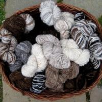 wool basket of hand spun yarn